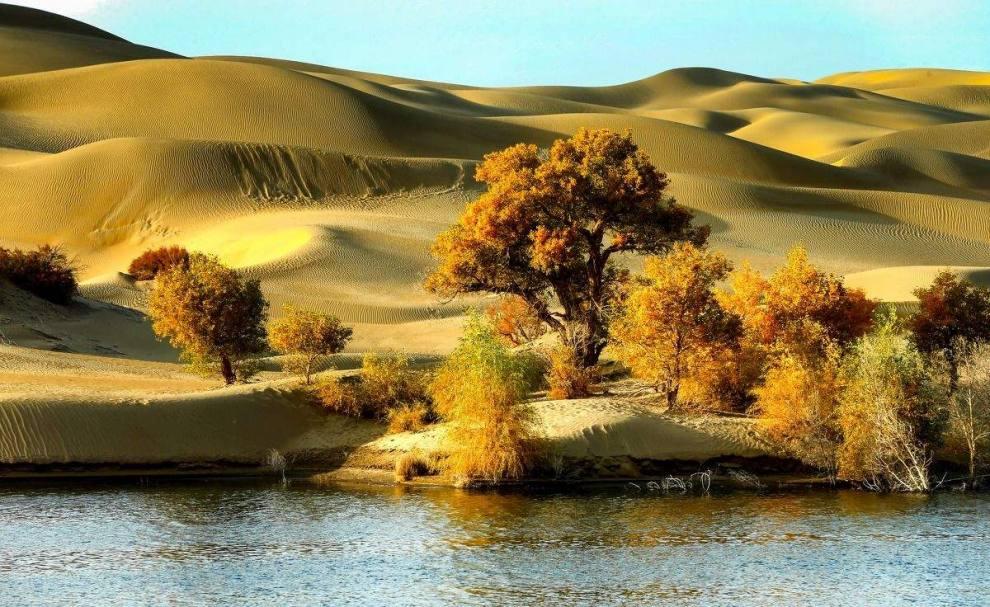塔克拉玛干沙漠4