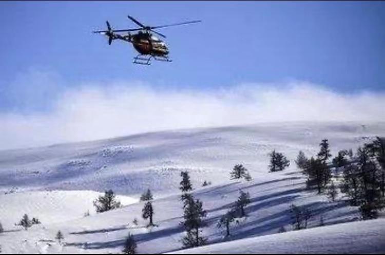 野雪公园直升机